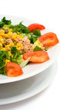 Salada do atum Fotografia de Stock Royalty Free