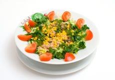 Salada do atum foto de stock