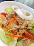 Salada do atum Imagens de Stock