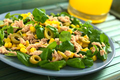 Salada do atum, do Sweetcorn e da azeitona Fotografia de Stock Royalty Free