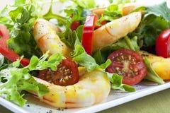 Salada do camarão Fotografia de Stock Royalty Free