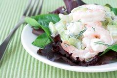 Salada do camarão Fotos de Stock Royalty Free