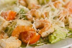 Salada do camarão com pão torrado Foto de Stock