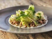 Salada do camarão com verdes misturados em uma placa Imagem de Stock