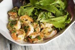 Salada do camarão da salsa Imagens de Stock Royalty Free