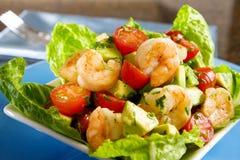 Salada do camarão do abacate Fotografia de Stock