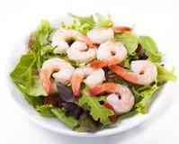 Salada do camarão Imagem de Stock Royalty Free