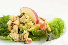 Salada do caril da galinha Fotografia de Stock