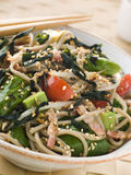 Salada do chá verde e do macarronete de Soba com Wakame Seawee fotos de stock royalty free