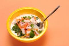 Salada do coalho Fotos de Stock Royalty Free