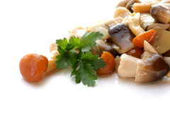 Salada do cogumelo Imagens de Stock