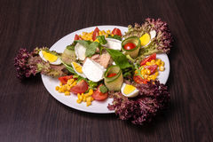A salada do cozinheiro chefe com atum Fotos de Stock Royalty Free