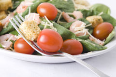 Salada do espinafre Imagens de Stock Royalty Free