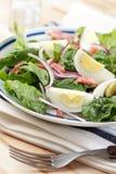 Salada do espinafre Fotografia de Stock