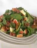 Salada do espinafre do bebê Imagem de Stock Royalty Free