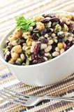 Salada do feijão fotos de stock royalty free