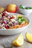 Salada do feijão-roxo Fotos de Stock