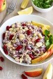 Salada do feijão-roxo Imagem de Stock