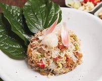 Salada do gengibre da tocha Fotografia de Stock Royalty Free