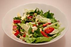 Salada do jardim Imagem de Stock