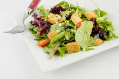Salada do jardim Fotos de Stock Royalty Free