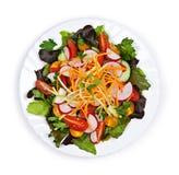 Salada do jardim Imagens de Stock