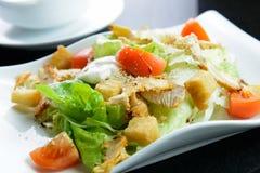 Salada do jardim com faixa da galinha Imagem de Stock