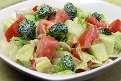Salada do jardim com pingamento Imagens de Stock Royalty Free
