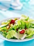 Salada do jardim de Geen fotos de stock