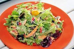 Salada do jardim na placa imagem de stock royalty free