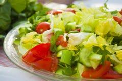 Salada do legume fresco Foto de Stock