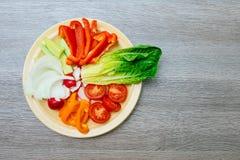 Salada do legume fresco com couve vermelha, pepino, rabanete, cenouras, pimentas doces, Imagens de Stock
