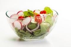 Salada do legume fresco com pepino e rabanete foto de stock