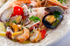 Salada do mar Foto de Stock Royalty Free