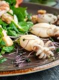 Salada do marisco Camarão de Langoustino, camarão do tigre, chocos, manga, abacate, rúcula e espinafres com beringela grelhada Pl fotografia de stock