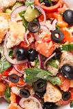 Salada do pão de Panzanella fotos de stock royalty free