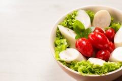 Salada do Palmetto Fotografia de Stock Royalty Free
