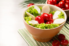 Salada do Palmetto Fotos de Stock Royalty Free