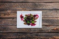 Salada do pato no molho de arando fotos de stock royalty free