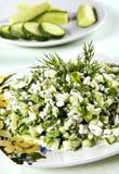 Salada do pepino imagem de stock royalty free