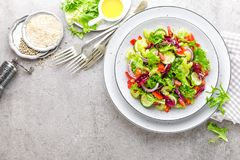 A salada do pepino fresco, aipo, pimenta doce, frize a alface, a cebola vermelha e as sementes de sésamo com azeite Vegetariano s Fotografia de Stock