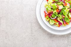A salada do pepino fresco, aipo, pimenta doce, frize a alface, a cebola vermelha e as sementes de sésamo com azeite Vegetariano s Foto de Stock Royalty Free