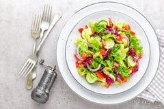 A salada do pepino fresco, aipo, pimenta doce, frize a alface, a cebola vermelha e as sementes de sésamo com azeite Vegetariano s Imagem de Stock