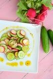 Salada do pepino do rabanete com molho do mel Foto de Stock Royalty Free