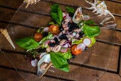 Salada do polvo Fotografia de Stock