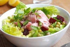 Salada do presunto e do vegetal Fotografia de Stock Royalty Free