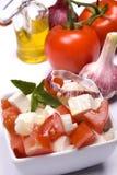 Salada do queijo foto de stock royalty free