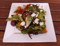 Salada do queijo das beterrabas e de cabras Fotografia de Stock Royalty Free