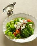 Salada do queijo de feta, alimento libanês. Imagens de Stock