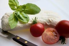A salada do queijo do Mozzarella é feita Fotos de Stock